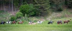 Turnusy jeździeckie dla zdrowia i rozrywki